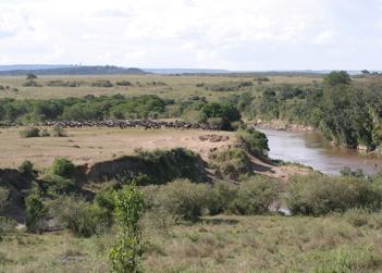 TN Masai-Mara