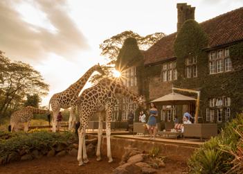 TN-Nairobi
